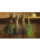 Sušená zelenina, bylinky